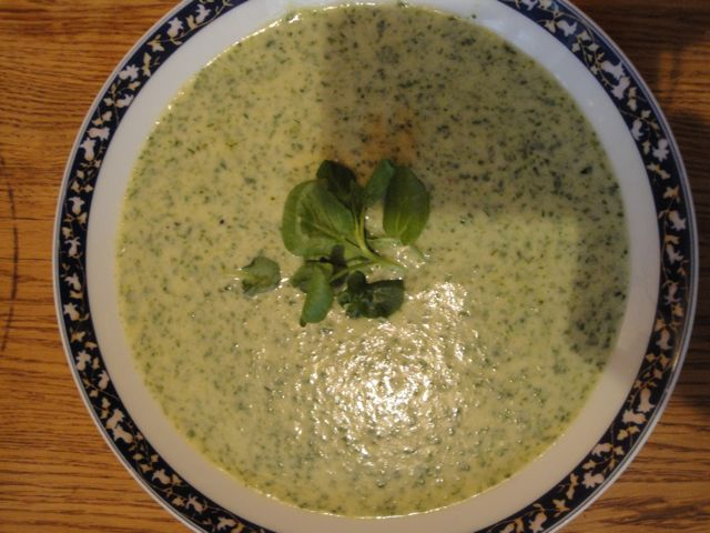 watercress%20soup.jpg